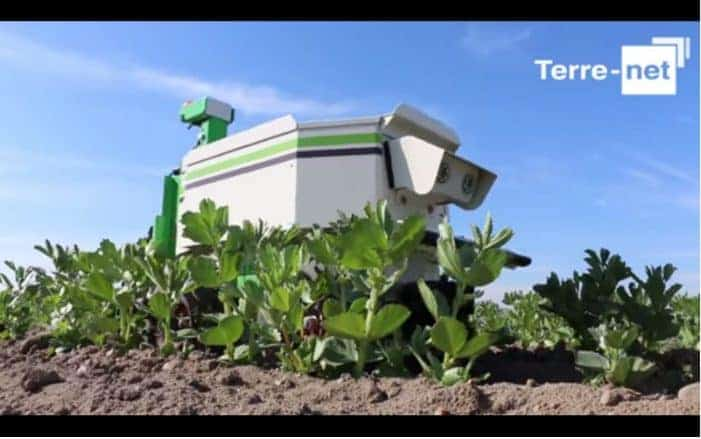 Rise of the Small Farm Robots – Food Tank
