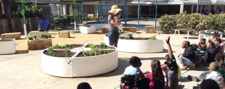 Elementary-school students gather in their school garden to learn how to grow their own food.