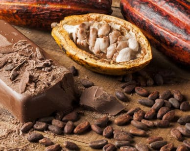 Chocothon seeks to improve the resilience and productivity of cocoa farming in Ghana.