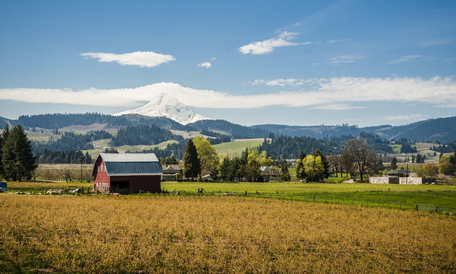 Food Tank had the chance to speak with Narendra Varma, the founder of Our Table, a multi-stakeholder cooperative farm and grocery in Sherwood, Oregon on the future of food cooperatives.