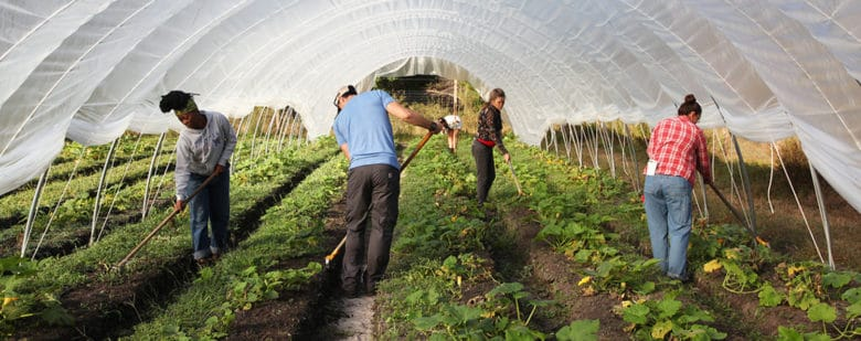 The Growing New Farmers Program is preparing the new generation of farmers and food systems leaders. Applications are now open for the 2017 program.