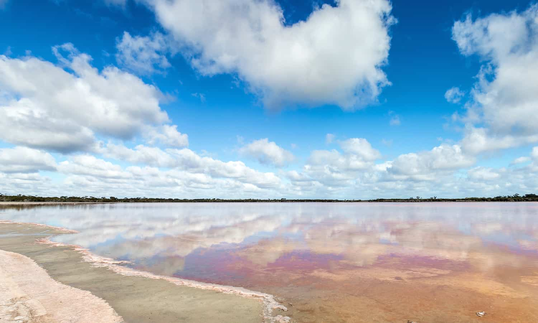 Mount Zero Olive Grove, traditional Aboriginal landowners, collaborate to hand harvest salt each year.