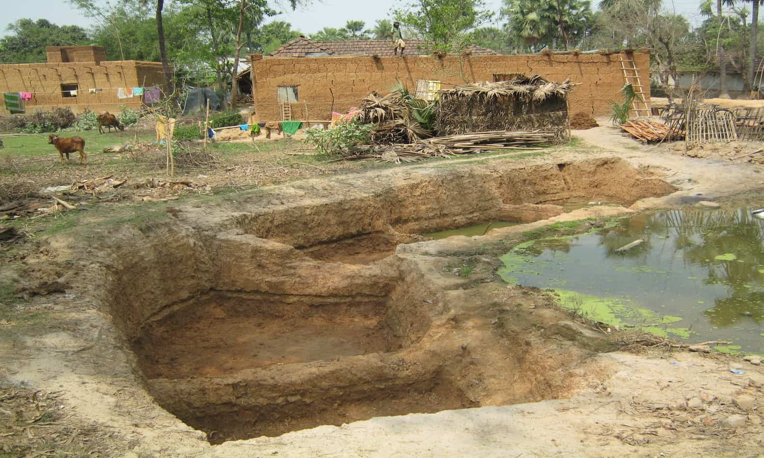 The Rajadighi Community Health Service Society's Doba Livelihood Program is helping Indian farmers fight climate change through water conservation.