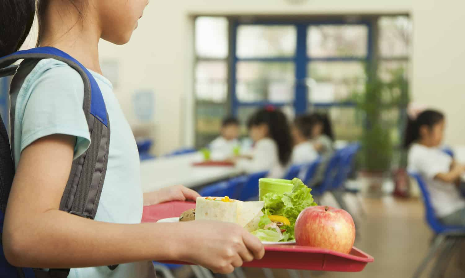 Impact of a Sociable School Meal
