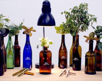 UrbanLeaf has created the world's smallest garden