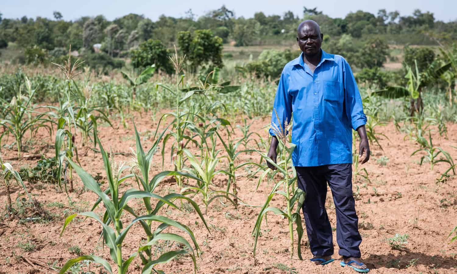 Extreme weather is a hallmark of climate change, and smallholder farmers like Moses are already feeling the toll.