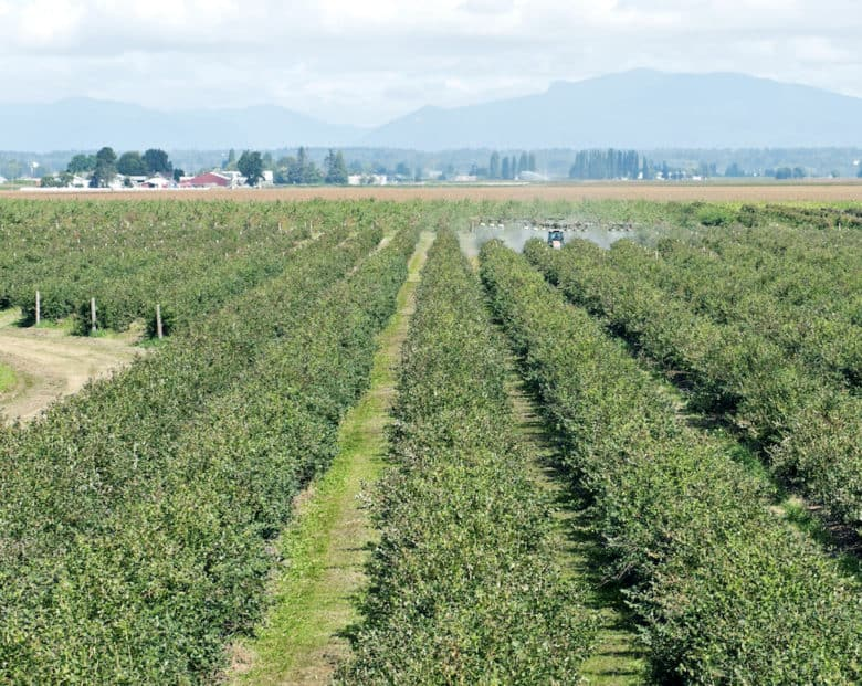 First New Farm Union in Half-Century signs labor contract.