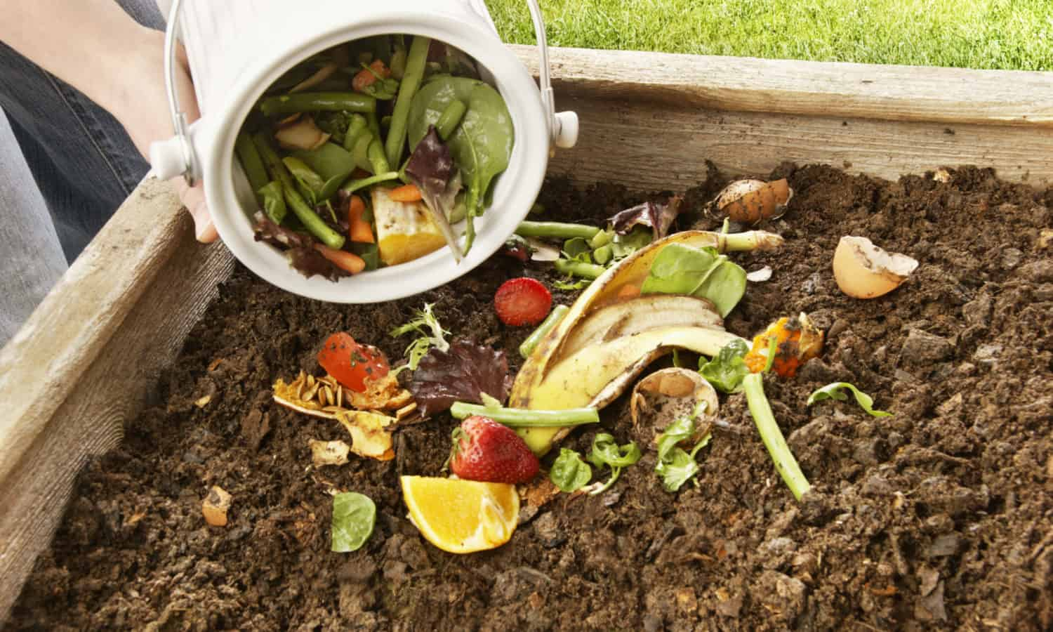 Emily Bachman on keeping food waste out of landfills as an easy way to reduce greenhouse gas emissions and bring life back to depleted soils.