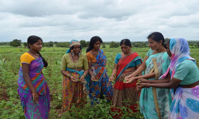 Women-Led Farming Model Wins 2017 United Nations Equator Prize