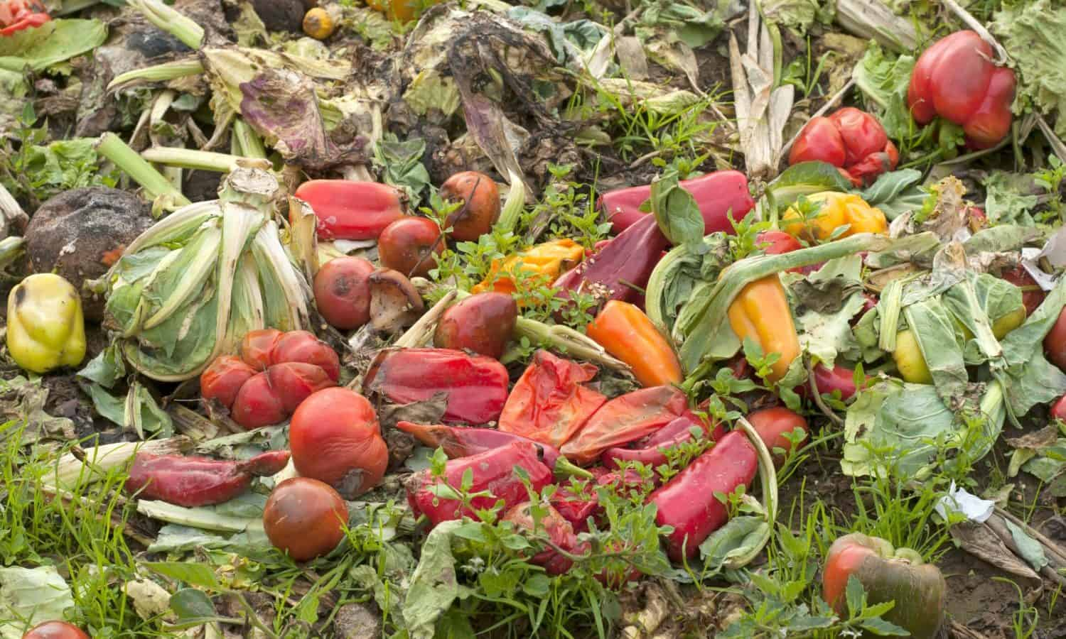 The Natural Resources Defense Council's latest food waste report highlights how consumers are the biggest wasters of food across the entire food chain.