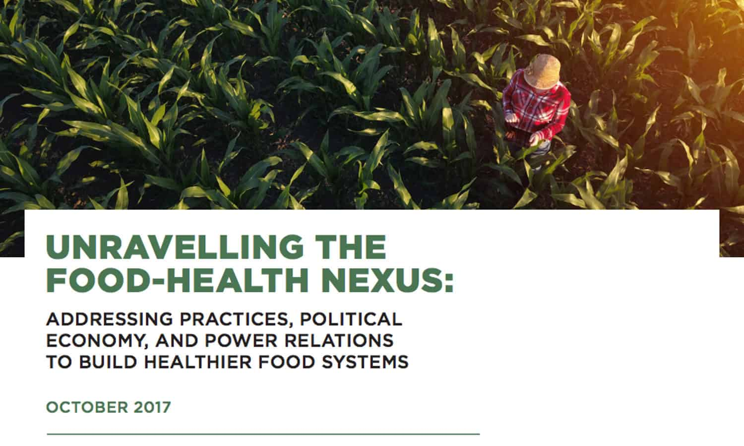 """An international team of experts has released a report documenting """"staggering"""" health costs of industrial food systems globally."""