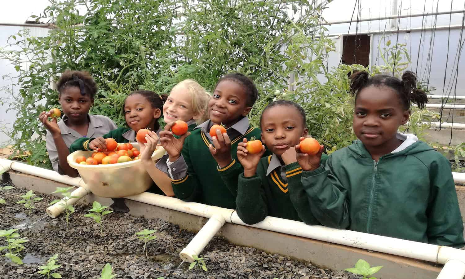 INMED Partnerships for Children is improving food security and creating opportunities for small farmers through their adaptive aquaponics programs.