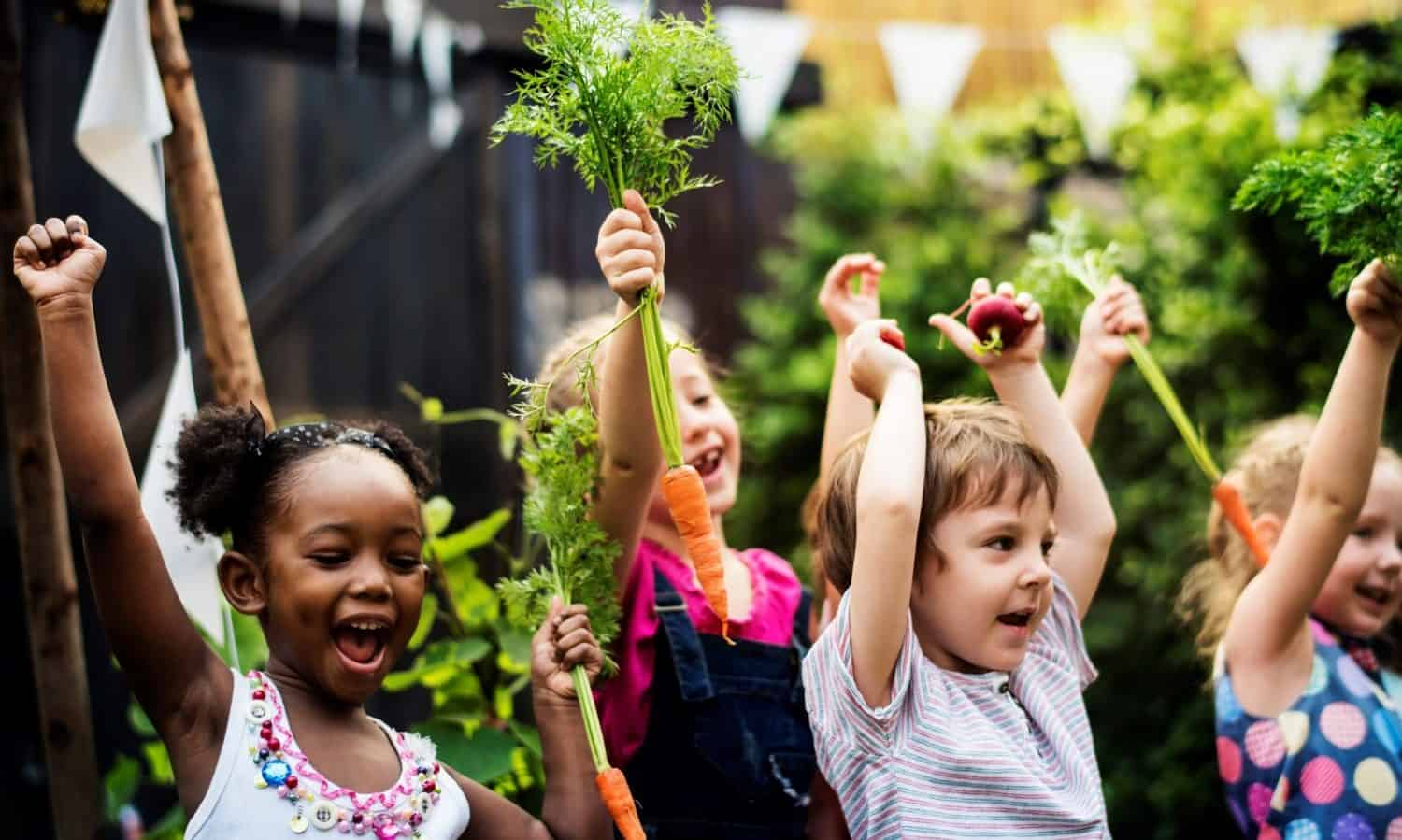 October is national Farm-to-School Month, and Food Tank is spotlighting 19 of the world's most innovative farm-to-school programs making an impact.