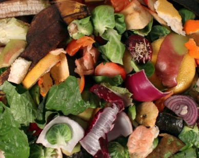 Danielle Nierenberg, president of Food Tank, discusses the issue of food waste and steps being taken to confront it.