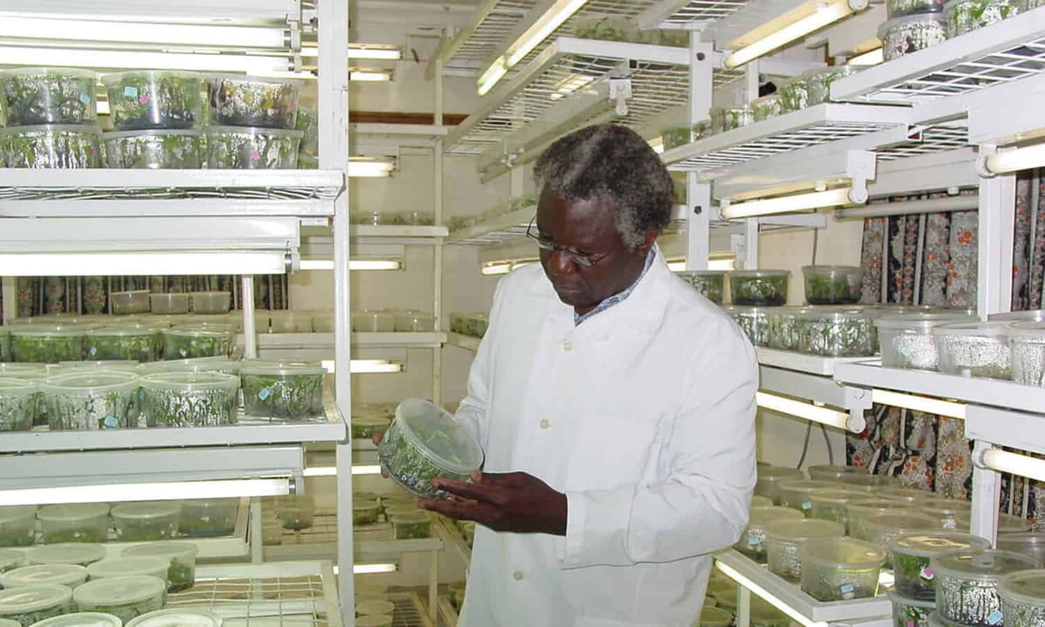 Dr. Calestous Juma, champion for innovation and technology to transform Africa, passed away on December 15 at the age of 64.