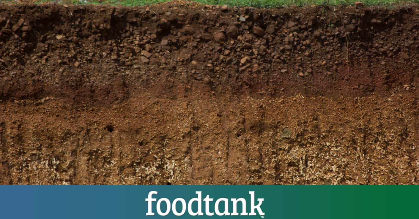 13 soil scientists to watch food tank for About soil science
