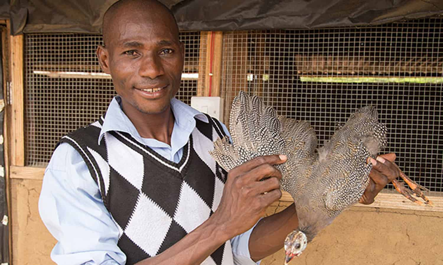The Red Goat of Maradi and guinea fowl are improving the lives of family farmers and the poor in West Africa by providing better nutrition and job opportunities