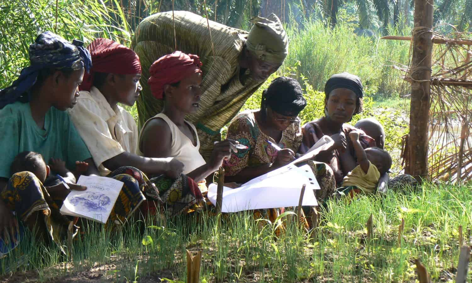 Is agroecology the solution to sustainable food systems?