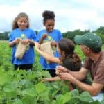 Fight Hunger and Grow Food with America's Grow-a-Row
