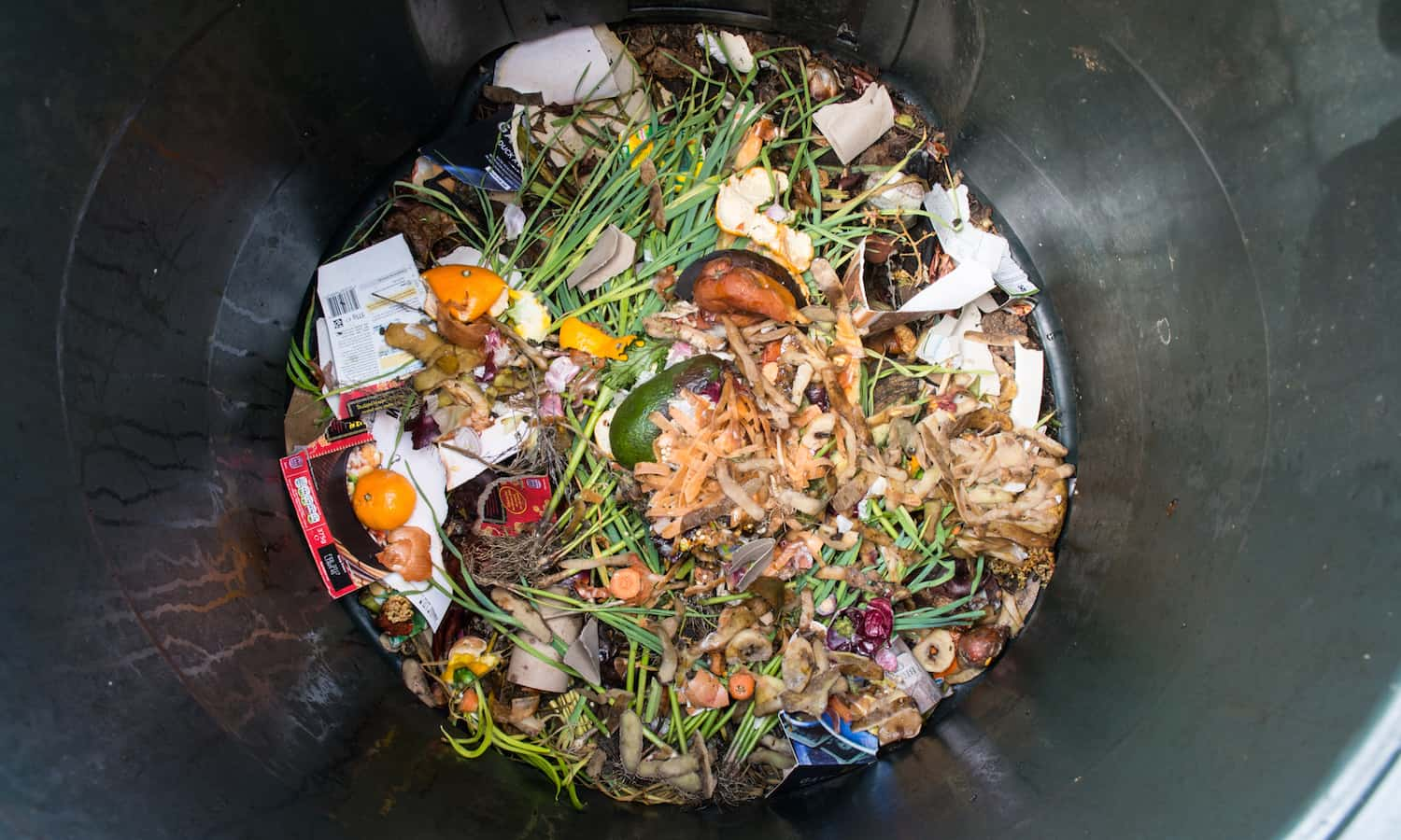 For Stop Food Waste Day, Food Tank is celebrating efforts to increase awareness and reduce food waste.
