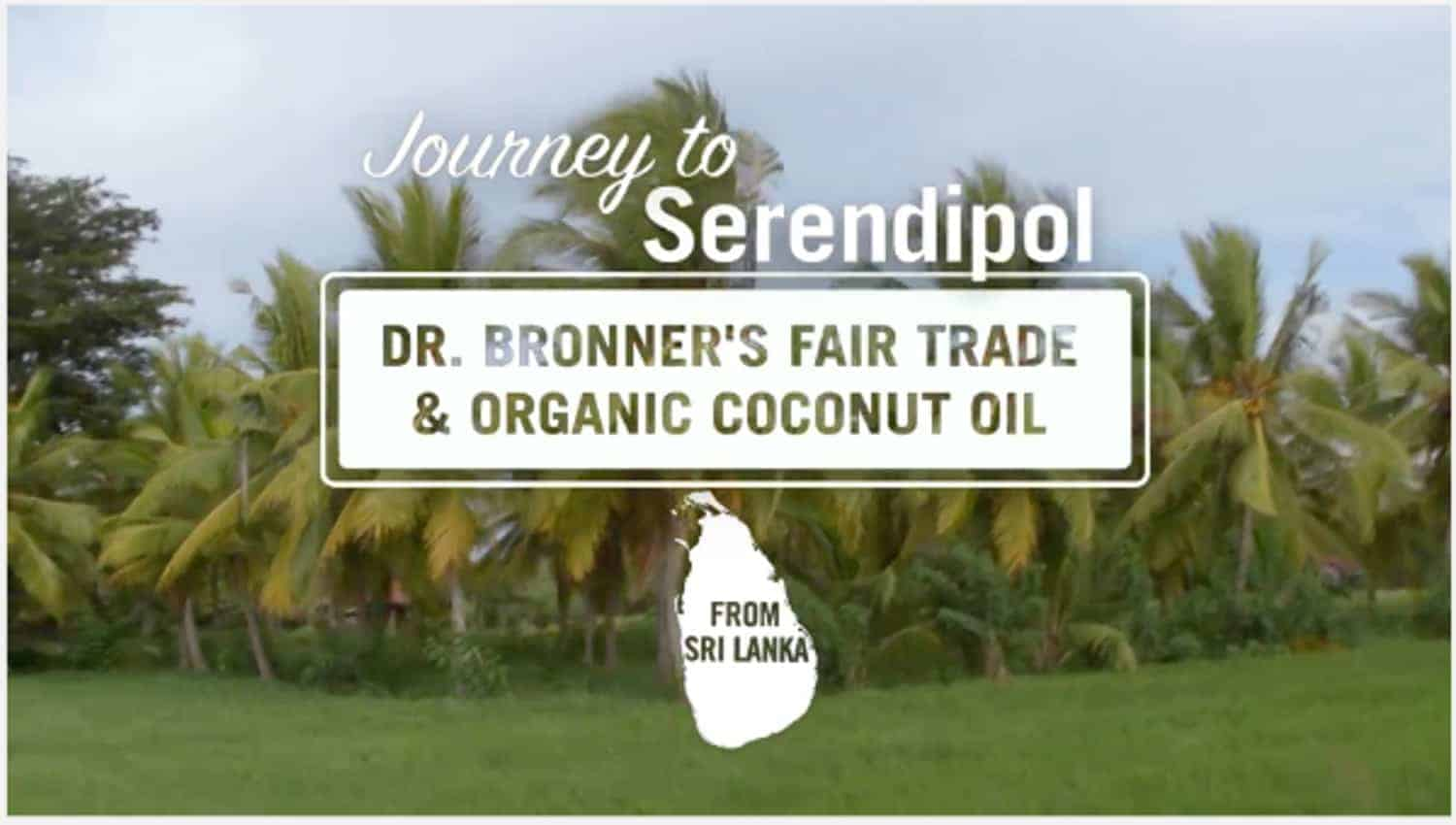 The company Dr. Bronner's is not just creating good-smelling, sustainable soaps and personal care items. They're also purchasing organic, fair trade coconut oil from small farmers in Sri Lanka, helping create a product that is healthy and sustainable--and increases farmers' incomes and ability to thrive in their communities.