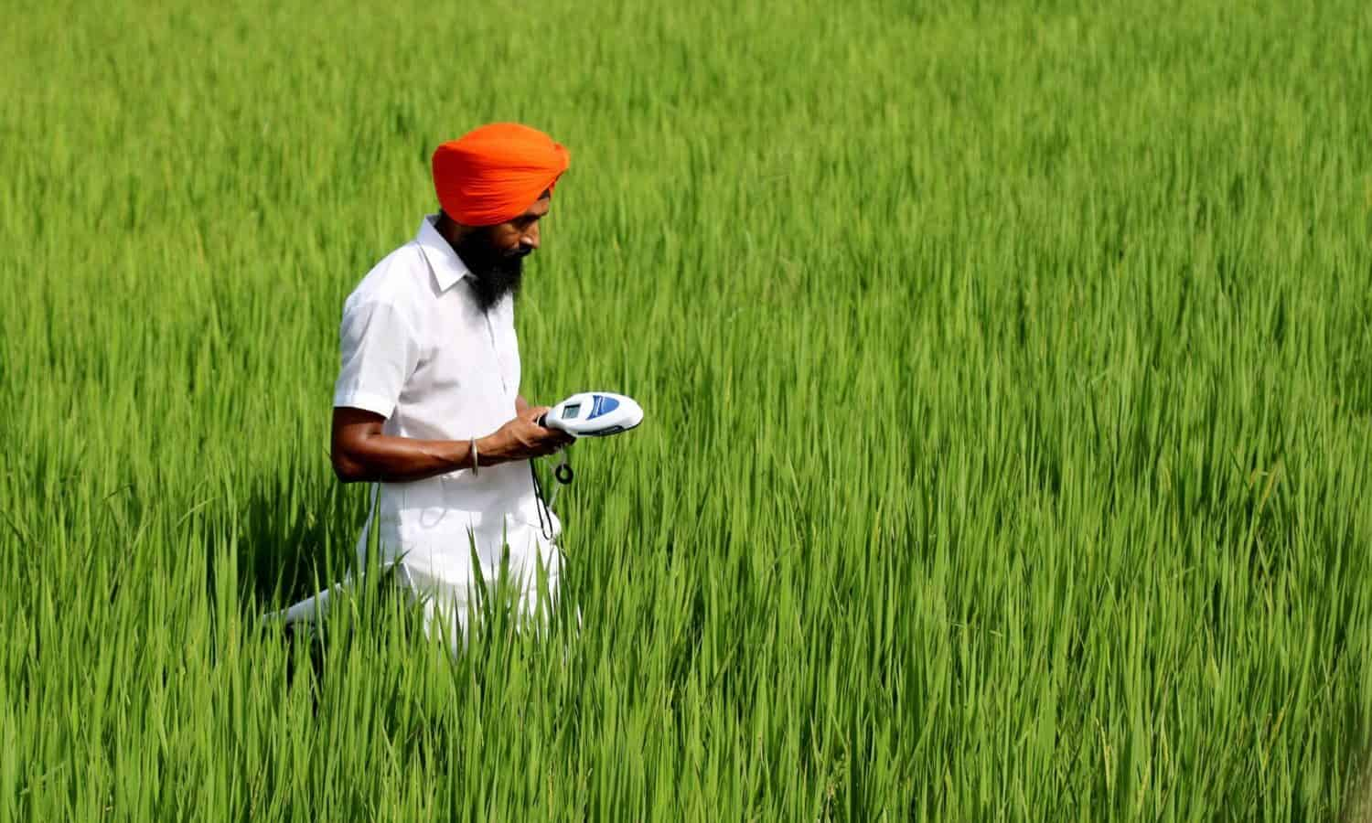 The use of Big Data in farming could usher in a new era for agricultural development. The CGIAR Platform for Big Data in Agriculture is leading the way forward, incorporating these tools in the work of 8,000 researchers worldwide.