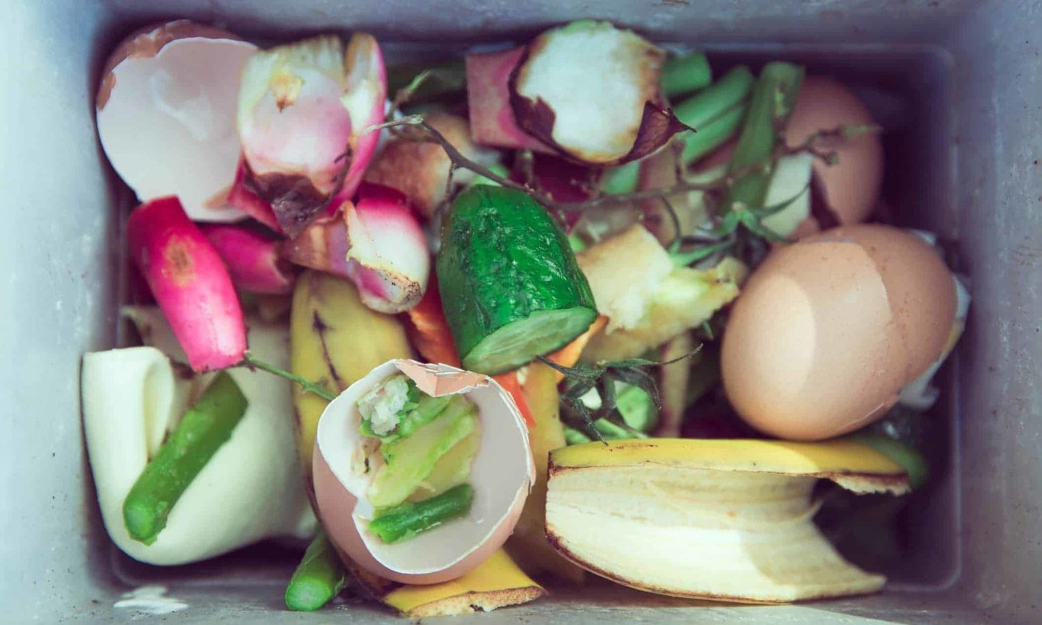 On April 18, 2018 the European Union passed the first ever European-wide legislation on food waste.