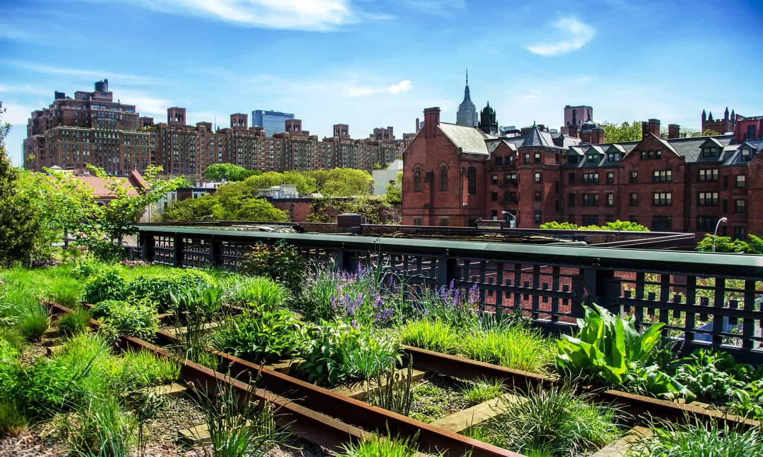 Edible perennials make parks and backyards more beautiful, ecologically resilient, and productive. These 15 organizations are creating edible landscapes around the world.