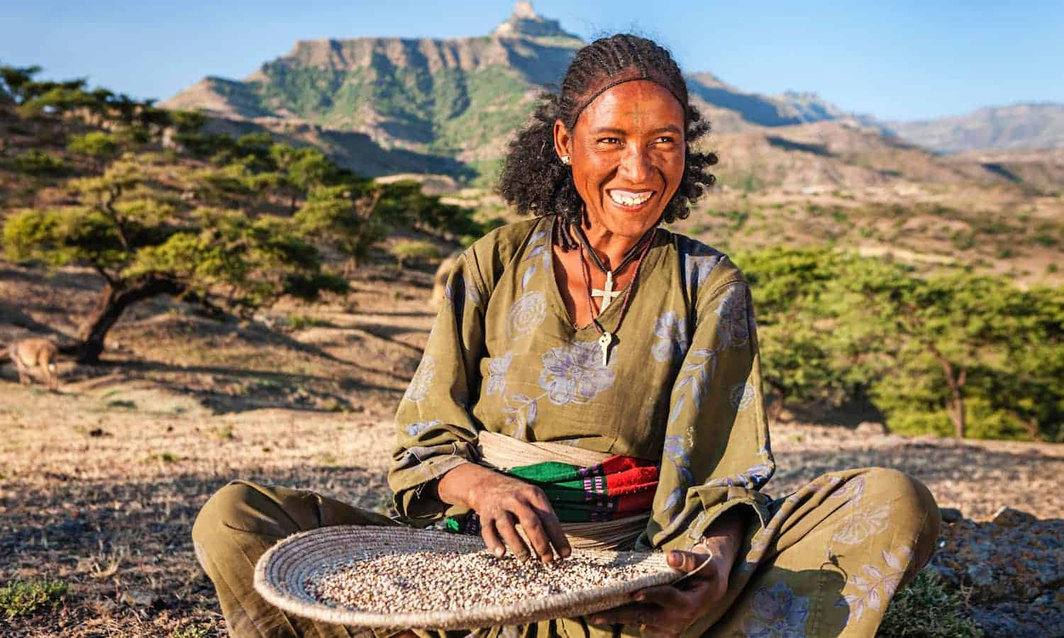 On International Day of the World's Indigenous Peoples, we are celebrating indigenous peoples' role in building a more resilient food system.