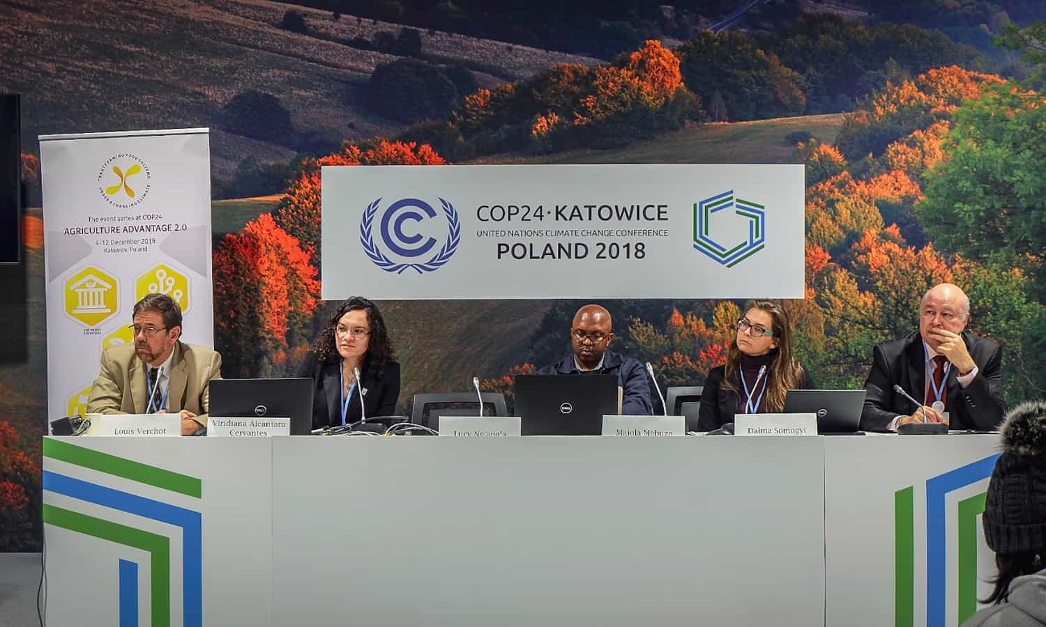 One-third of carbon emissions are absorbed by the earth's biosphere. After forests, agricultural lands and wetlands have the most potential to do this. A panel of experts convened at COP24 last week to discuss ways in which this potential can be realized.
