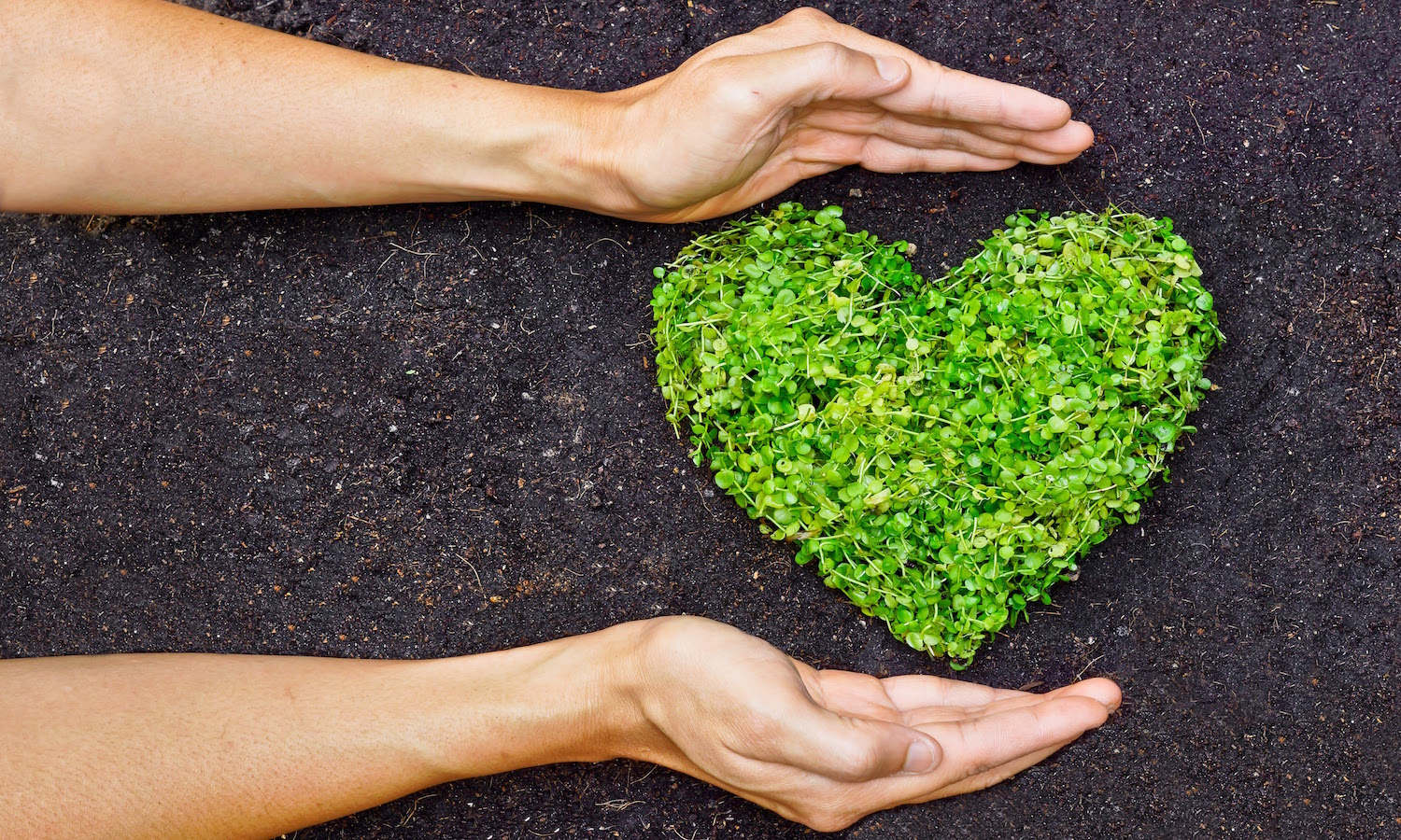 Celebrate Valentine's Day with lots of love and without the waste of plastic wrapped gifts. Food Tank lists activities that replace the waste!