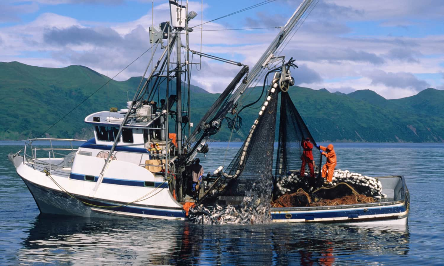 Aquaculture may be a key player in providing food security to a growing population, but if it isn't done carefully, the environment on which it relies can pay the price. In Australia, farming Atlantic Salmon had its sustainability rating downgraded due to ecological disruptions surrounding aquaculture operations. Fortunately, there are alternatives for Australian dinner plates.