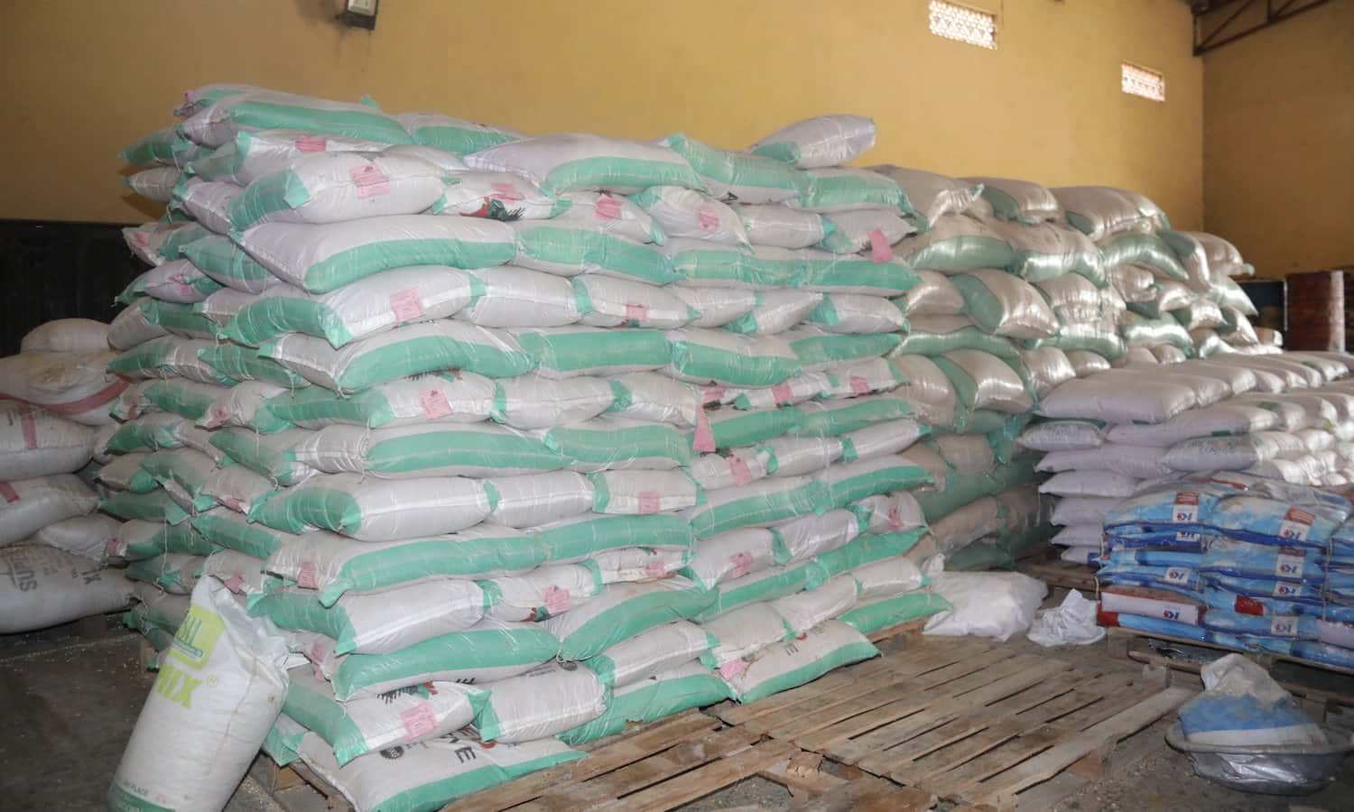 Seed harmonization rules have greatly benefitted West African nations' ability to speedily import and export large amounts of important seeds.