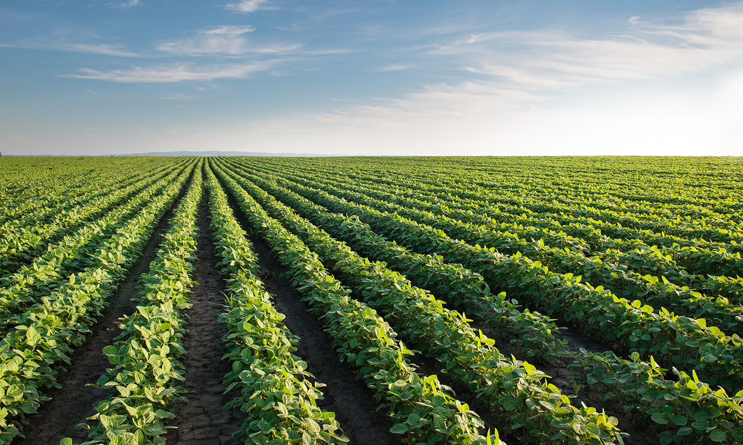 The Agricultural Worker Program Act could help to bring stability to farmworkers, their communities, their agricultural employers, and our food system as a whole.