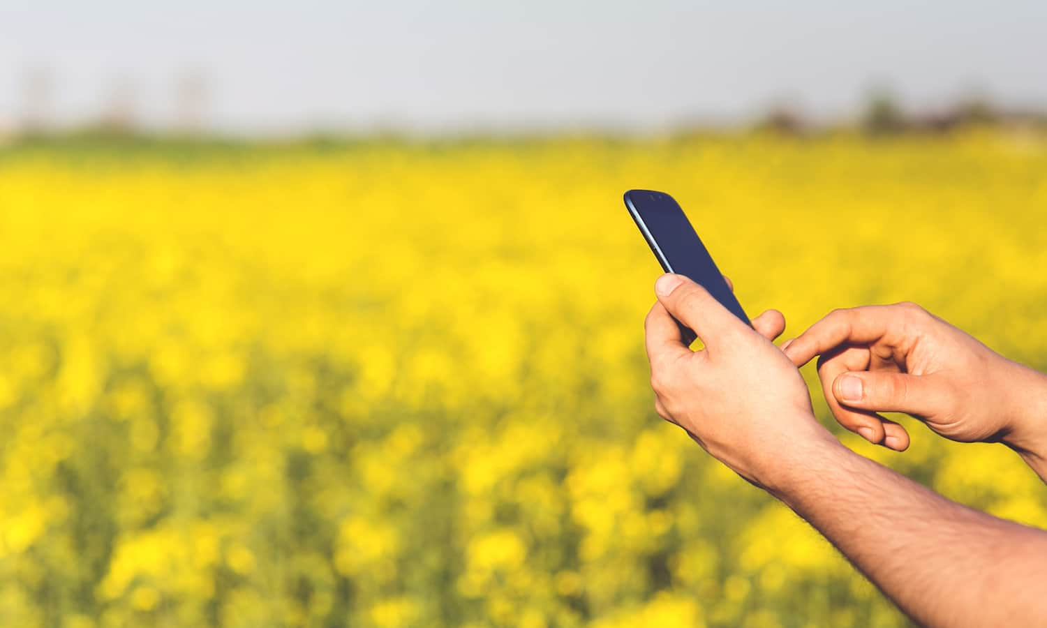 These advances in AI and Big Data are making it easier and less laborious for farmers to understand small occurrences and larger trends on their farms.