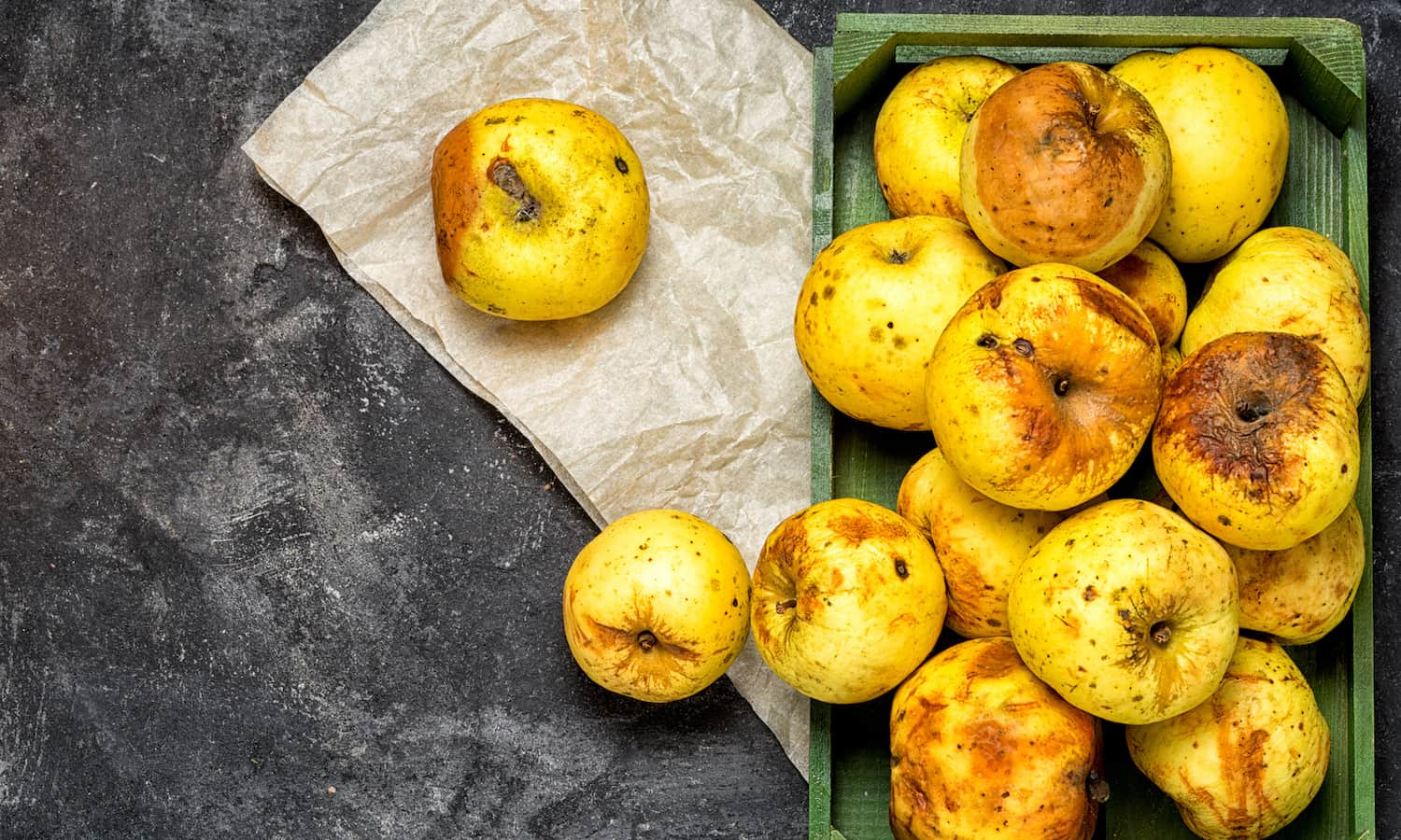 There is an ongoing revolution in food packaging technologies. Can small-scale farmers take advantage of these advances to reduce post-harvest food loss?