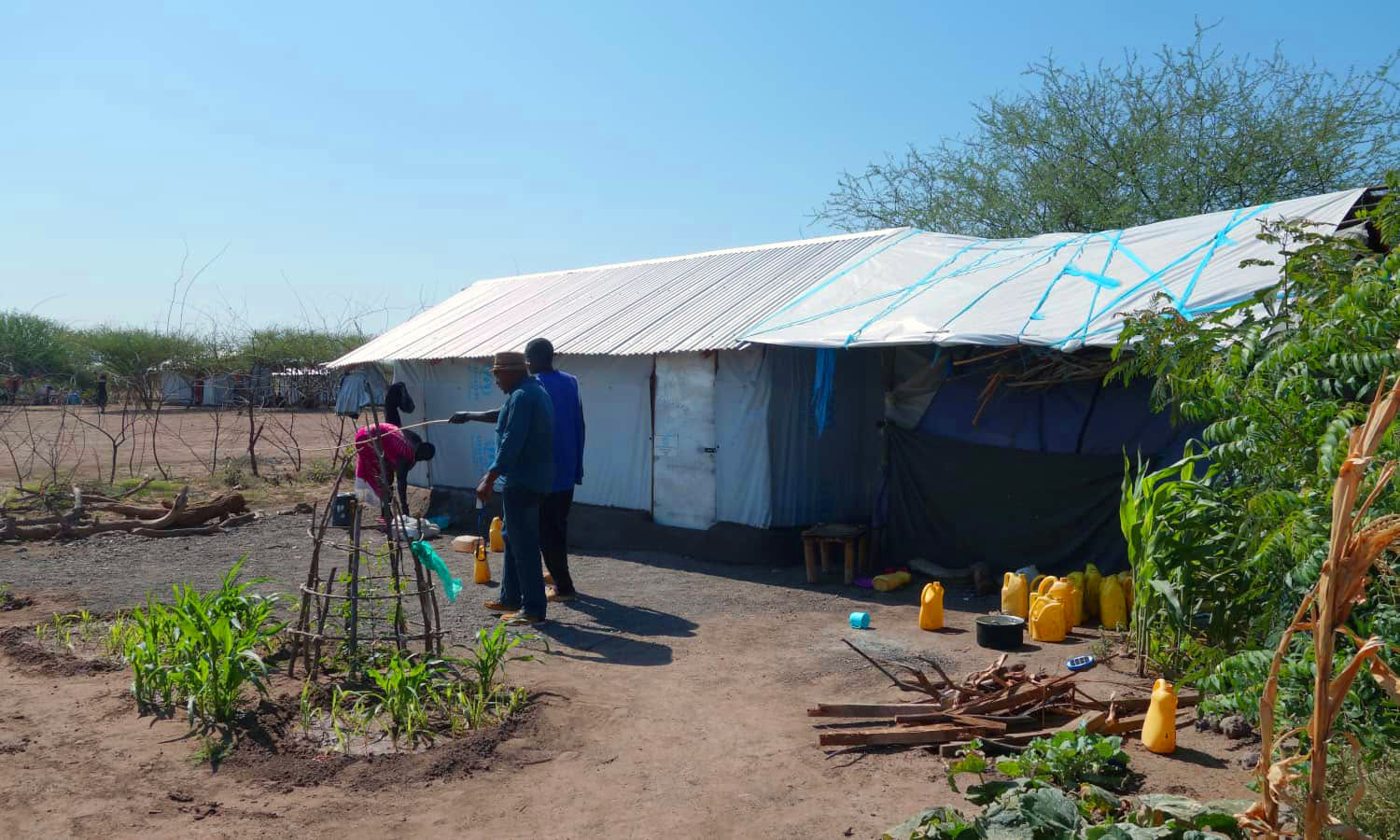 For refugees living in the Kalobeyei Settlement in northern Kenya, urban farming could be a viable strategy to secure their livelihoods.