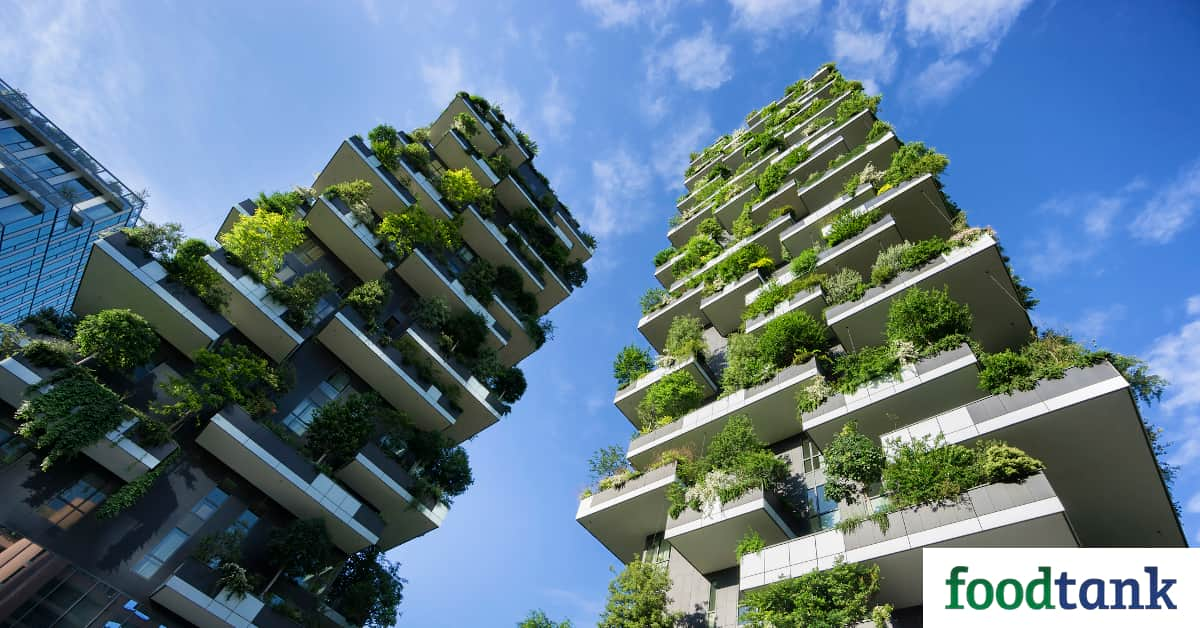 16 Initiatives Changing Urban Agriculture Through Tech And Innovation Food Tank