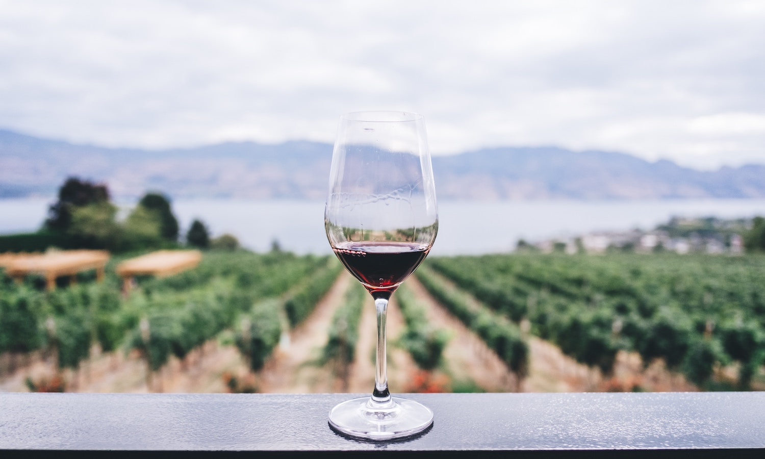 Breweries, distilleries, and wineries are using both traditional and technological methods to produce their unique beverages—and protect the planet.