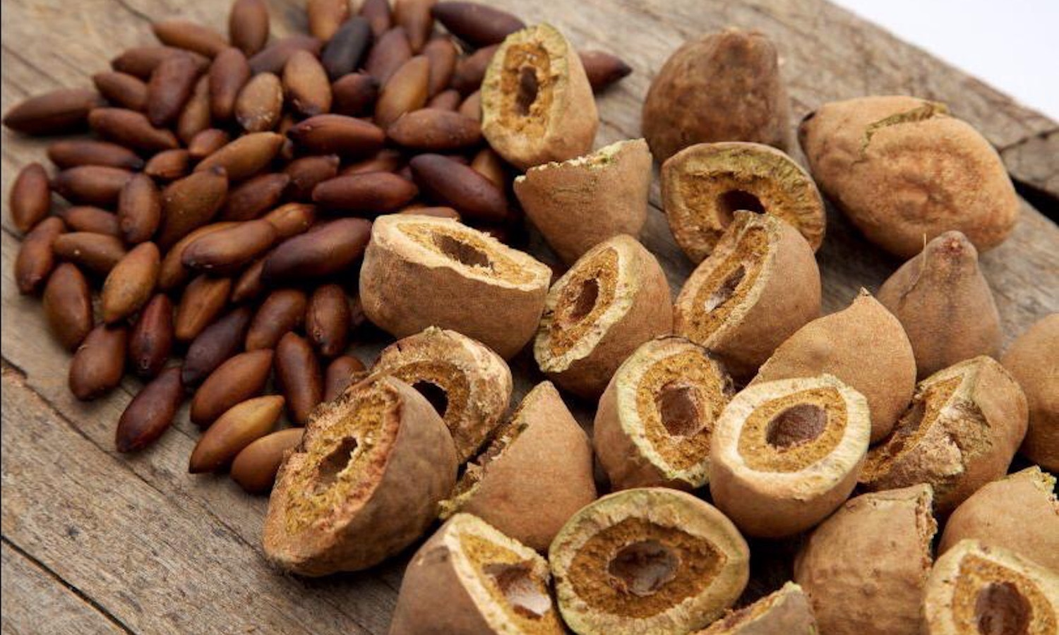 Regenature, a Brazillian health foods importer and exporter, wants to regenerate the Cerrado by popularizing the native Baru nut