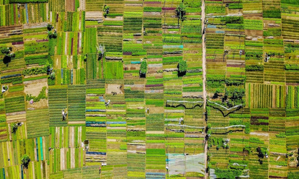 The UN has called a World Food Systems Summit in 2021. How we talk about food systems and with whom we talk about them will matter most.