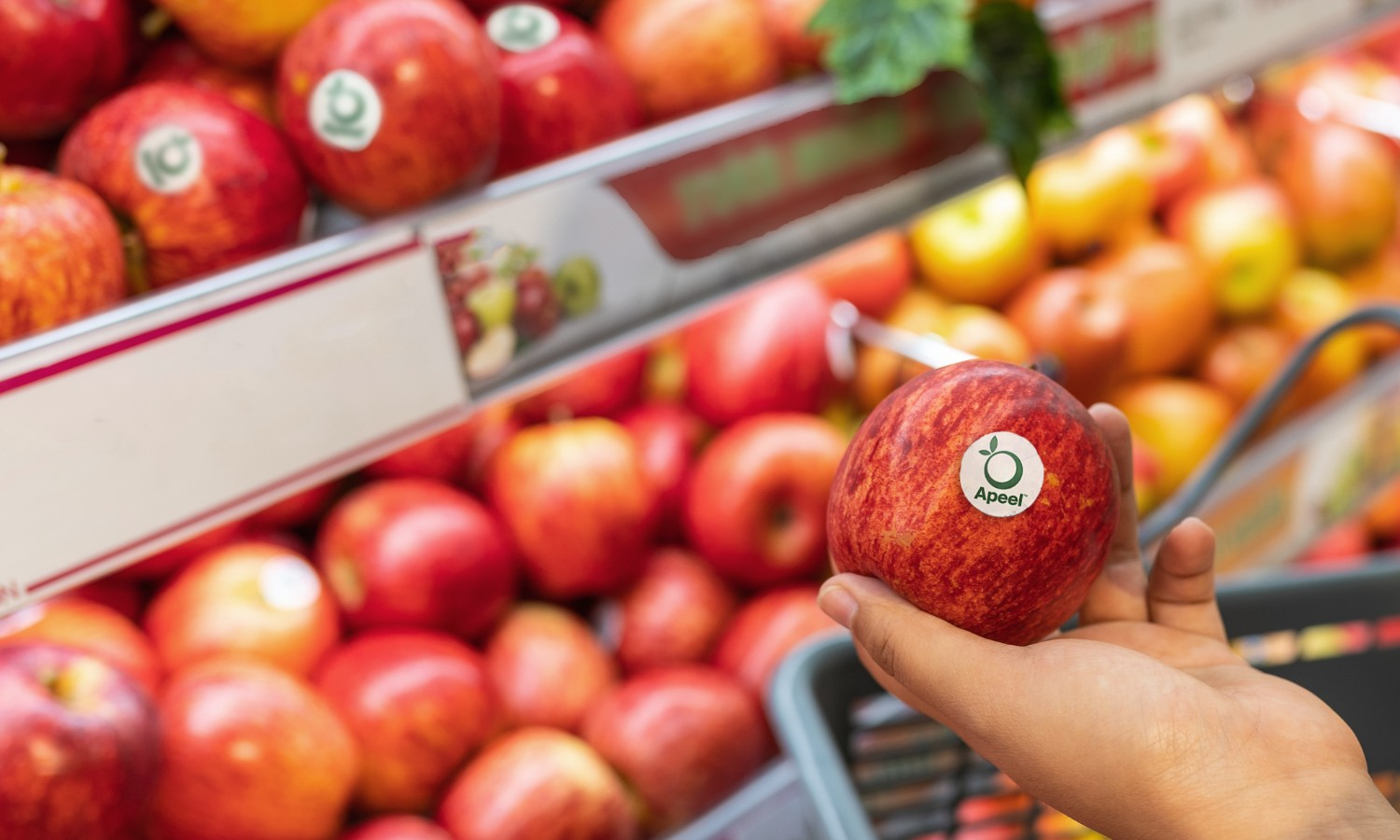 Apeel Sciences, whose edible coatings keep produce fresher longer, announced US$250 million in new funding. Their mission is to fight food waste globally.