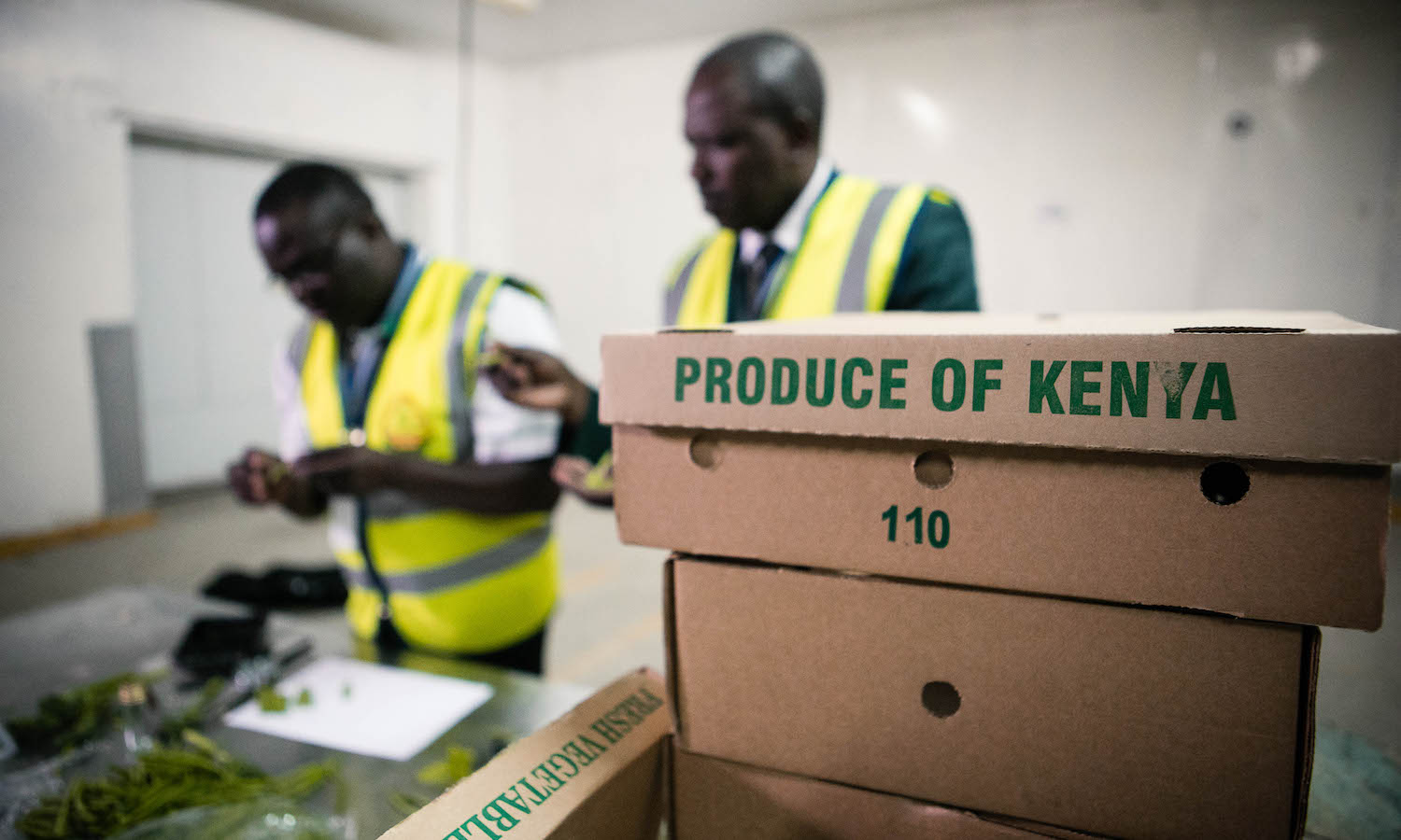Kenya's prosperous perishable exports are wilting due to global lockdown