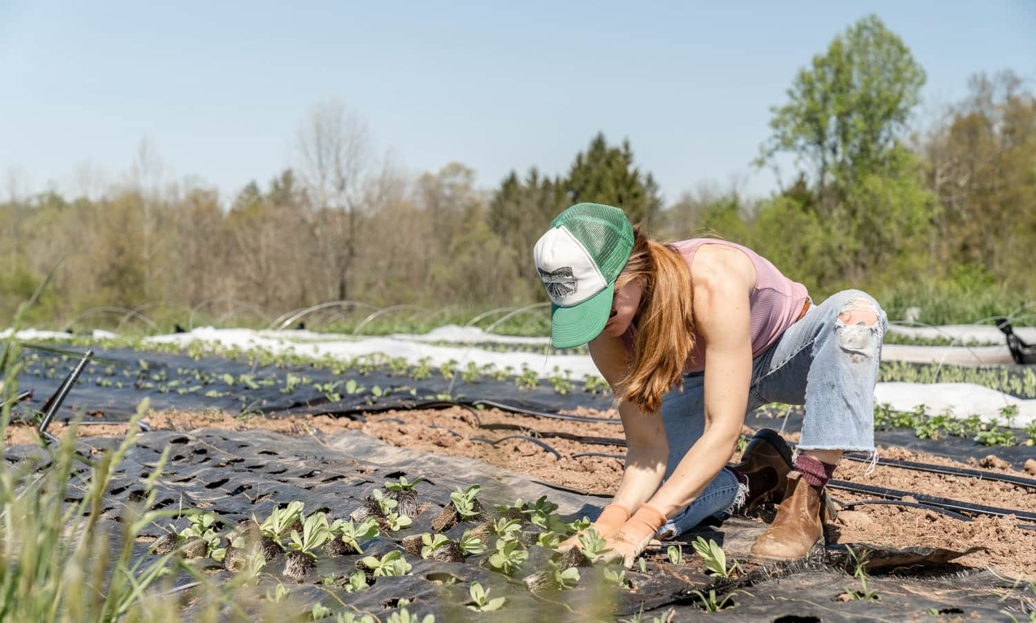 To celebrate International Youth Day, Food Tank has compiled a list of youth who are changing the food system.