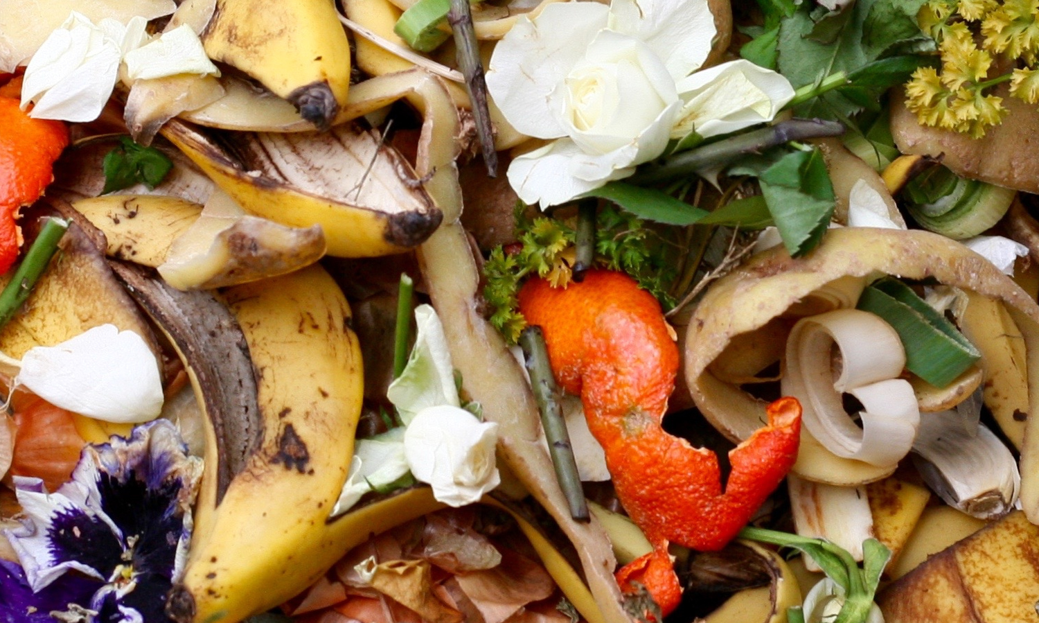 12 Organizations Creating Food Products From Upcycled Food Waste