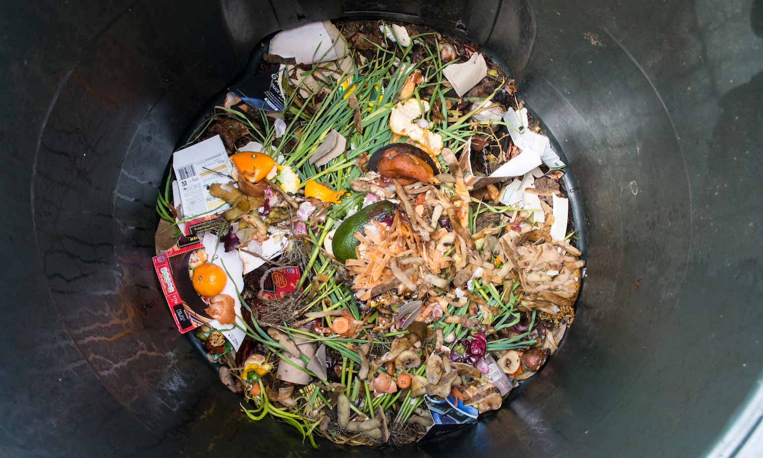 Food Waste is a Solvable Issue