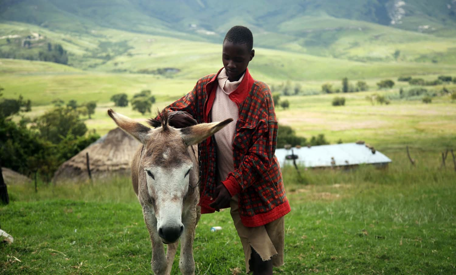 Lesotho and IFAD Address the Rural Economy and Sustainable Agriculture