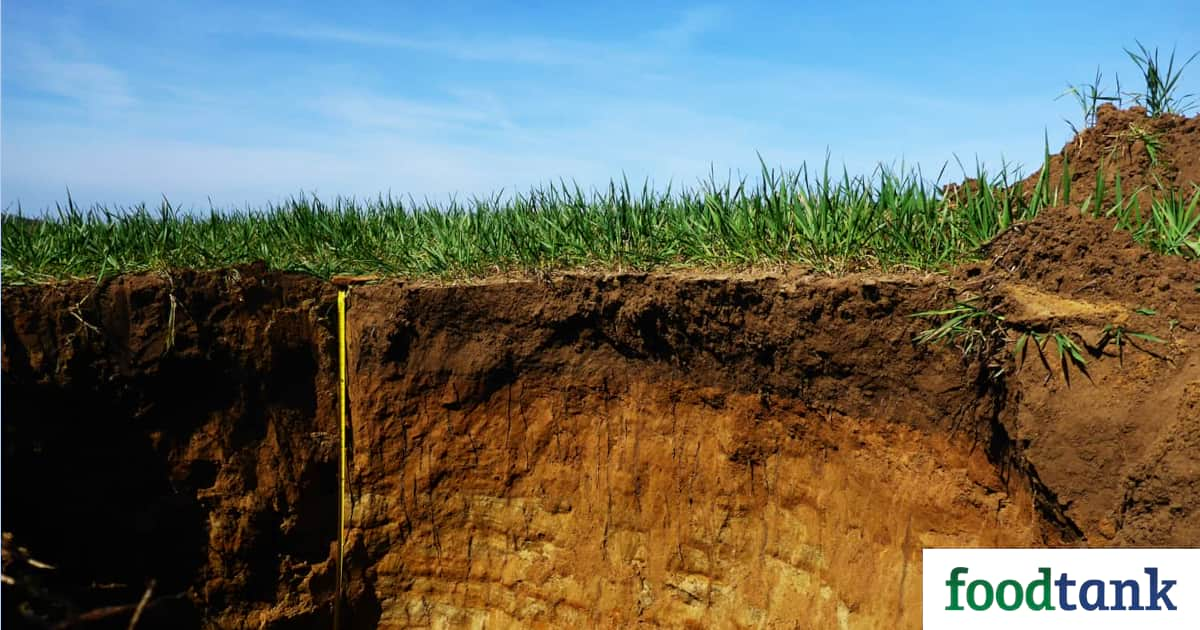 Farming Right Can Boost Soil Lifespans, Research Shows